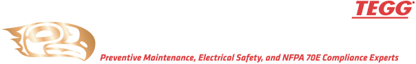 NPC Energy Services LLC